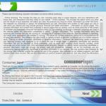 consumerinput adware installer sample 15
