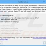taplika.com browser hijacker installer sample 4
