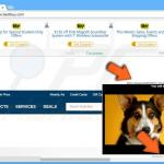shopperz29072015 coupon ads