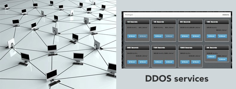 ddos services for hire