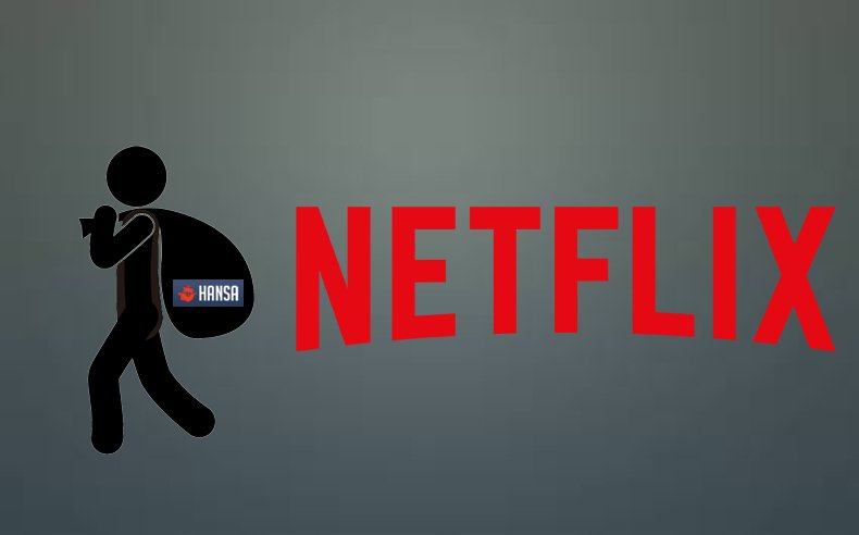 netflix accounts on hansa marketplace