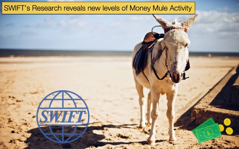 swift research on money mules