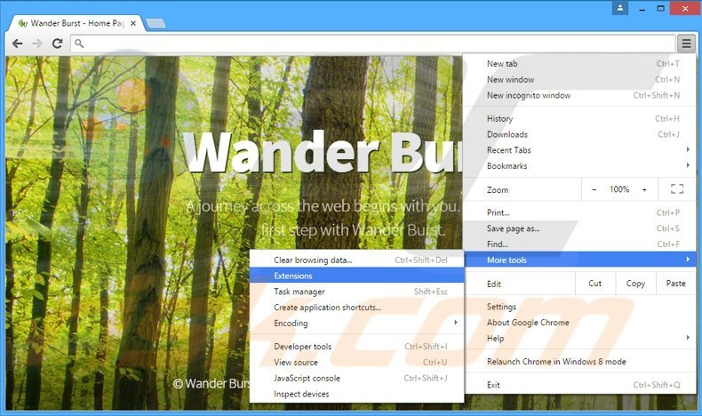 Removing Wander Burst  ads from Google Chrome step 1