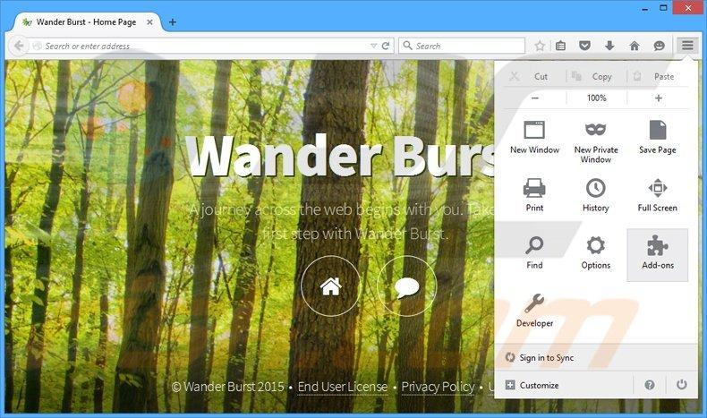 Removing Wander Burst ads from Mozilla Firefox step 1