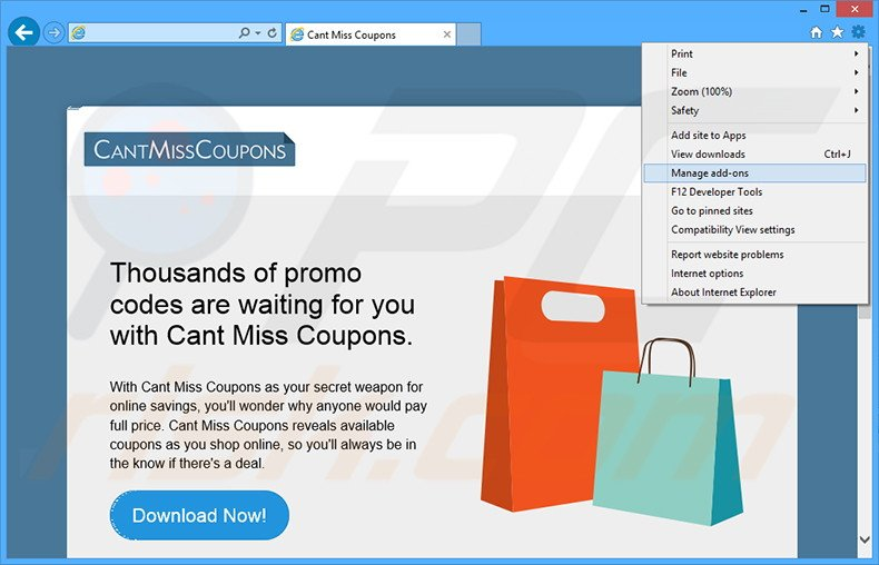 Removing Cant Miss Coupons ads from Internet Explorer step 1