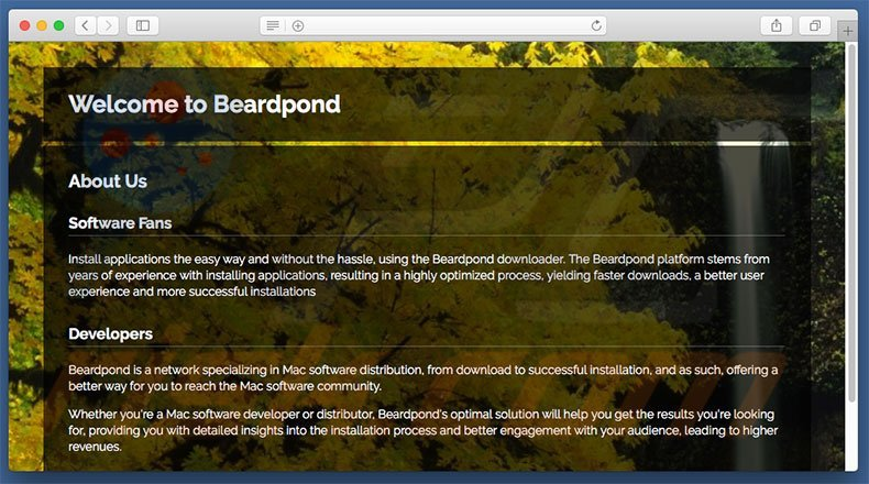 Dubious website used to promote search.beardpond.com