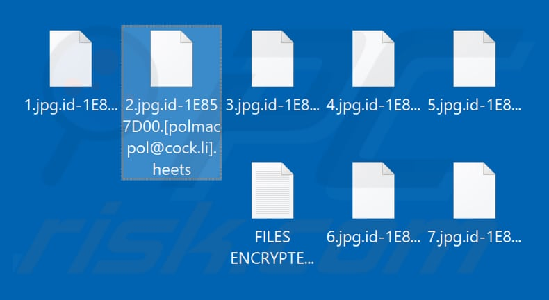 Files encrypted by Heets