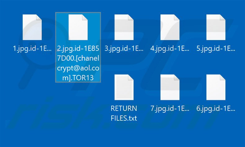 Files encrypted by TOR13
