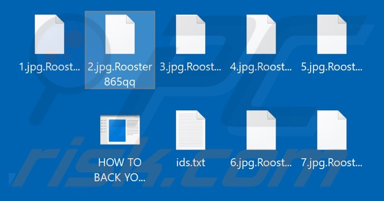 Files encrypted by Rooster865qq