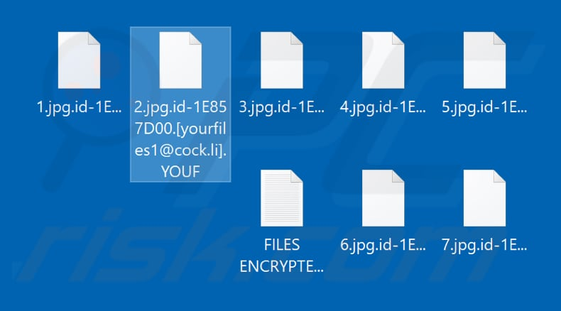 Files encrypted by YOUF ransomware (.YOUF extension)