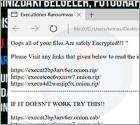 Executioner (Cellat) Ransomware
