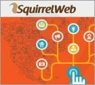 Ads by SquirrelWeb