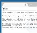 New Ransomware Threat Targets Websites